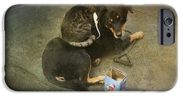 Animal Cards Photographs iPhone Cases - Were In This Together iPhone Case by Laurie Search