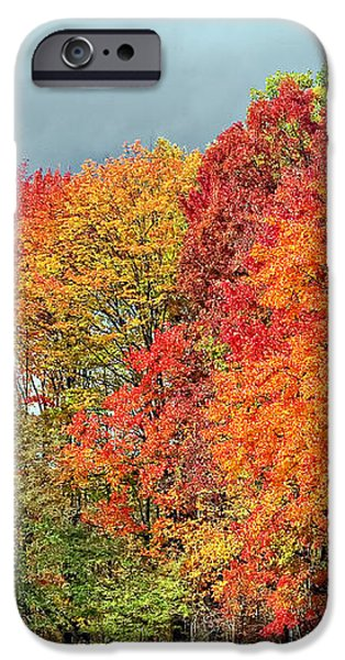 West Virginia Maples 2 iPhone Case by Steve Harrington