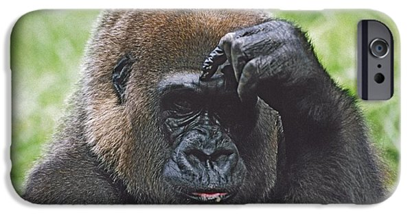 Hand On Head iPhone Cases - Western Gorilla Portrait With Finger On iPhone Case by David Ponton