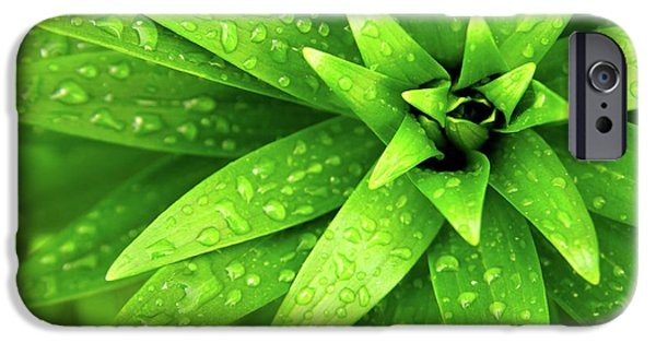 Recently Sold -  - Raining iPhone Cases - Wet Foliage iPhone Case by Carlos Caetano
