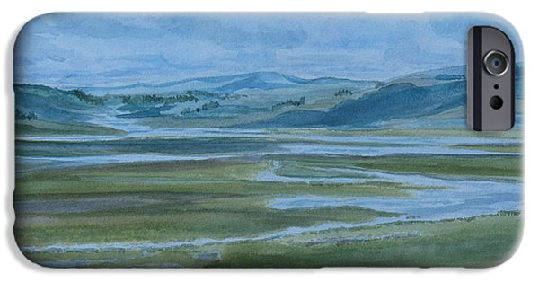 Wetlands iPhone Cases - Wet Summer in Big Sky Country iPhone Case by Jenny Armitage