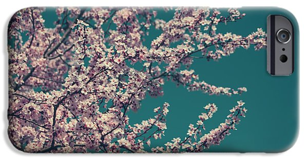 Cherry Blossoms iPhone Cases - What This New Life Will Bring iPhone Case by Laurie Search