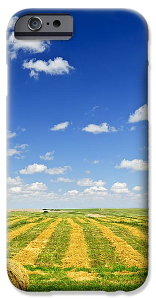 Wheat farm field at harvest iPhone Case by Elena Elisseeva