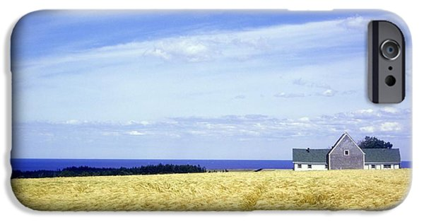 North Rustico iPhone Cases - Wheat Field iPhone Case by David Chapman