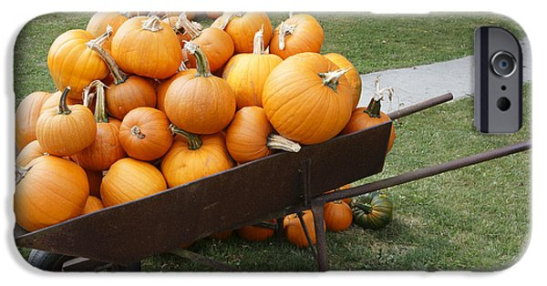 Agricultural iPhone Cases - Wheelbarrow Full Of Pumpkins iPhone Case by John  Mitchell