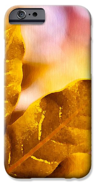 When Leaves Turn Gold iPhone Case by Artist and Photographer Laura Wrede