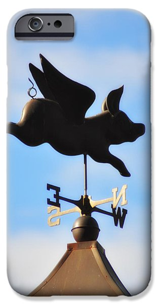 Pig Digital iPhone Cases - When Pigs Fly iPhone Case by Bill Cannon