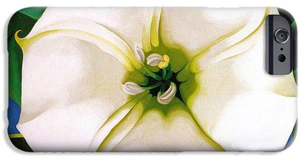Nature Divine iPhone Cases - White Flower 9 iPhone Case by Sumit Mehndiratta