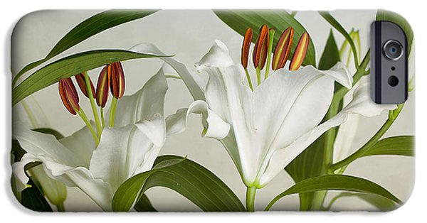 Floral Photographs iPhone Cases - White Lilies iPhone Case by Nailia Schwarz