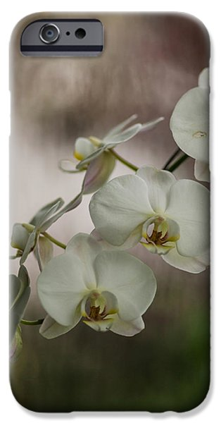 Macro iPhone Cases - White of the Evening iPhone Case by Mike Reid