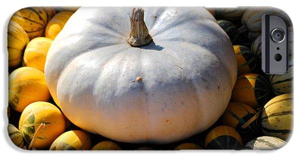 White Pumpkin iPhone Case by Jai Johnson