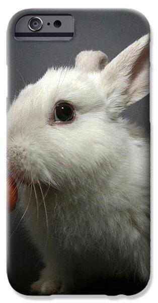 white rabbit  iPhone Case by Yedidya yos mizrachi