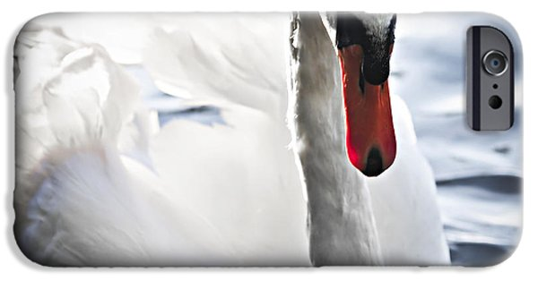 Swan iPhone Cases - White swan iPhone Case by Elena Elisseeva