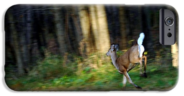 Nature Center Pond iPhone Cases - White Tail Running Deer iPhone Case by LeeAnn McLaneGoetz McLaneGoetzStudioLLCcom