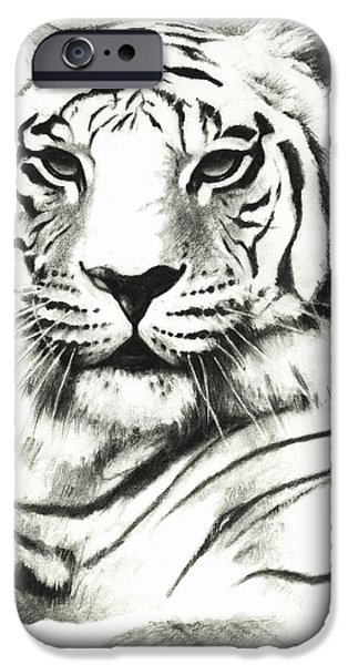 Stripe Drawings iPhone Cases - White Tiger Portrait iPhone Case by Lin Petershagen