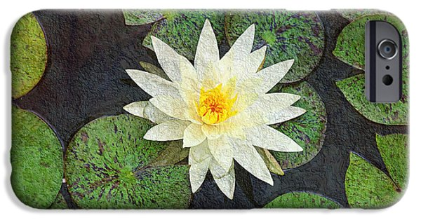Aquatic Mixed Media iPhone Cases - White Water Lily iPhone Case by Andee Design