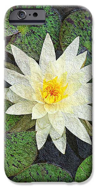 White Water Lily iPhone Case by Andee Design