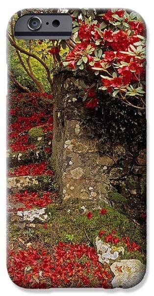 Garden Statuary iPhone Cases - Wild Garden, Rowallane Garden, Co Down iPhone Case by The Irish Image Collection