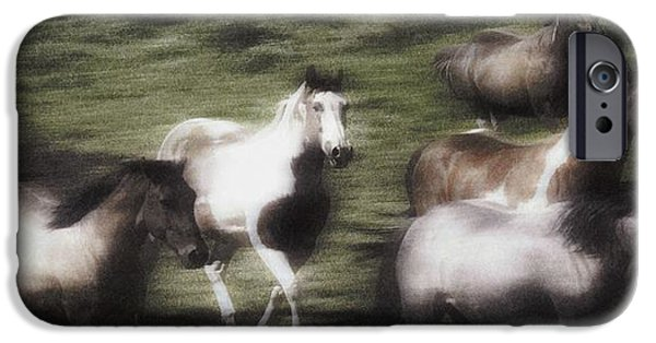 Ambition Photographs iPhone Cases - Wild Horses On The Move iPhone Case by Don Hammond