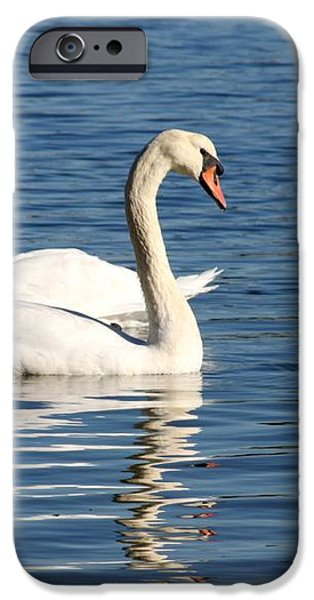 Wild Swans iPhone Case by Sabrina L Ryan