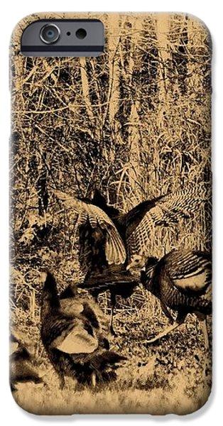 Wild Turkeys iPhone Case by Bill Cannon