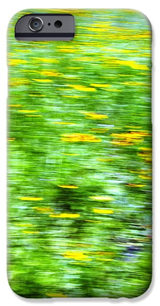 Wildflowers and Wind 2 iPhone Case by Skip Nall