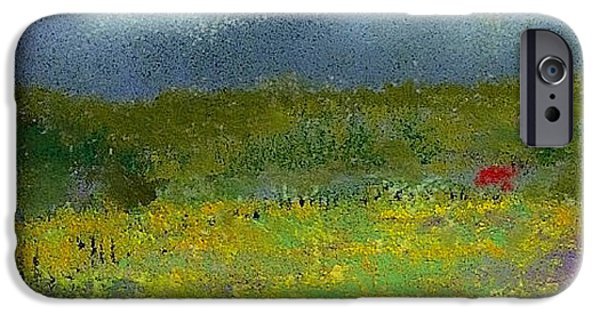 Field Pastels iPhone Cases - Wildflowers iPhone Case by David Patterson