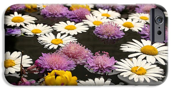 Rain Barrel iPhone Cases - Wildflowers on water iPhone Case by Emanuel Tanjala