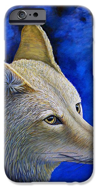 Wiley Coyote iPhone Case by Brian  Commerford