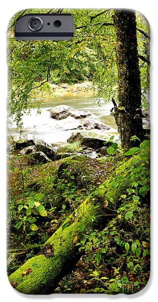 Williams River iPhone Case by Thomas R Fletcher