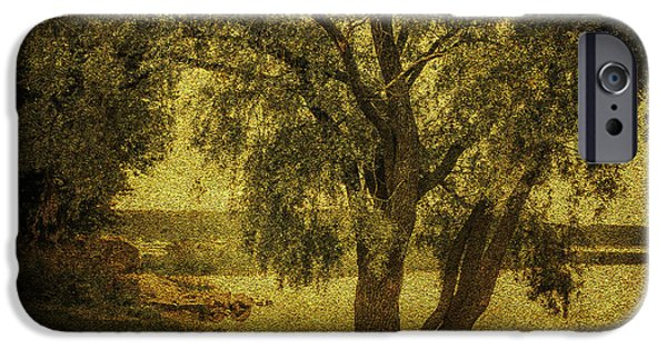 Willow Lake iPhone Cases - Willow at the Lake. Golden Green Series iPhone Case by Jenny Rainbow