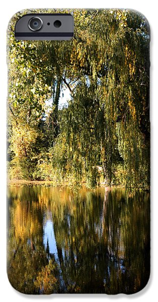 Nature Center Pond iPhone Cases - Willow Mirror iPhone Case by LeeAnn McLaneGoetz McLaneGoetzStudioLLCcom