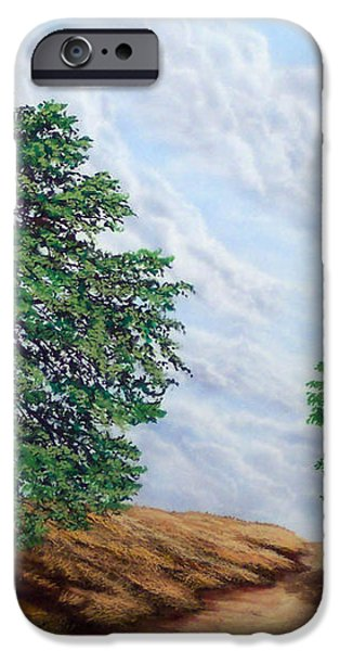 Windblown Clouds iPhone Case by Frank Wilson
