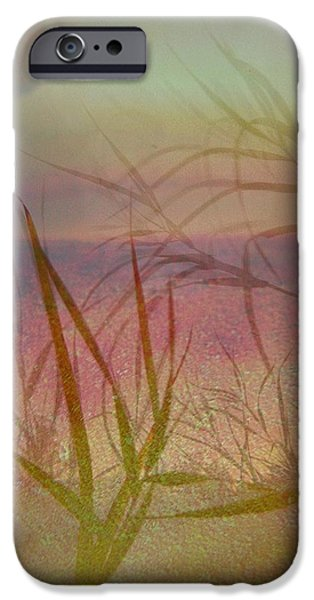 Windswept  iPhone Case by Shirley Sirois