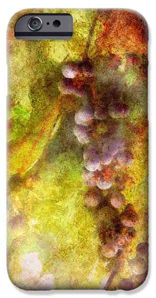 Vino Photographs iPhone Cases - Wine - Grapes iPhone Case by Mike Savad