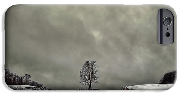 Winter Storm iPhone Cases - Winter Blues iPhone Case by Evelina Kremsdorf