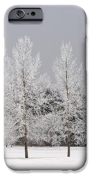 Winter, Calgary, Alberta, Canada iPhone Case by Michael Interisano