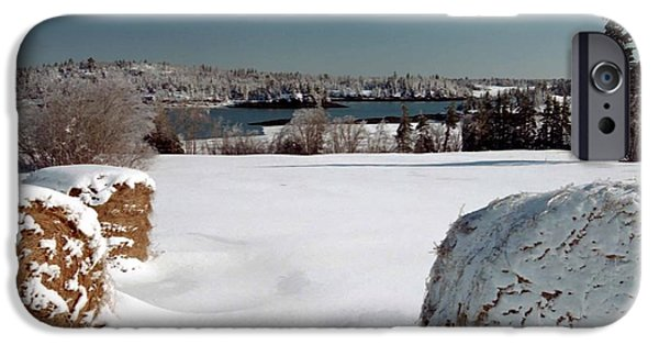 Winter In Maine iPhone Cases - Winter Downeast iPhone Case by Alana Ranney