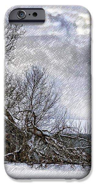 Winter Farm iPhone Case by Steve Harrington