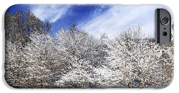 Snowy iPhone Cases - Winter forest covered with snow iPhone Case by Elena Elisseeva