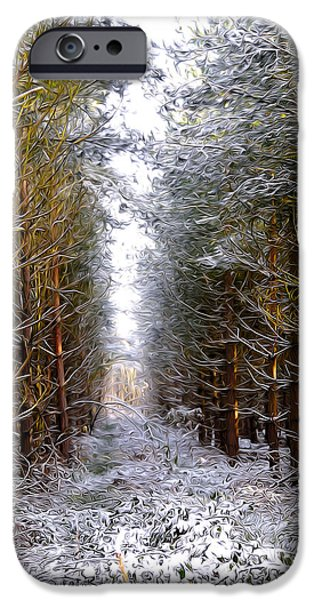 Sun Rays Mixed Media iPhone Cases - Winter Forest iPhone Case by Svetlana Sewell