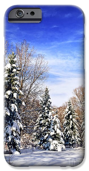 Snow Scene iPhone Cases - Winter forest under snow iPhone Case by Elena Elisseeva