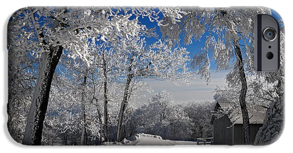 Winter Mornings iPhone Cases - Winter Morning iPhone Case by Lois Bryan