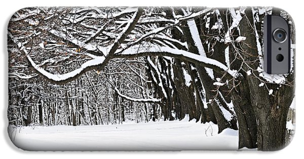 Cold Weather iPhone Cases - Winter park with snow covered trees iPhone Case by Elena Elisseeva
