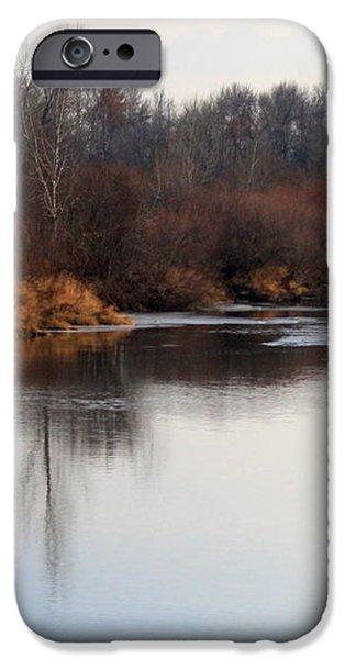Winter Riverbank iPhone Case by Carol Groenen