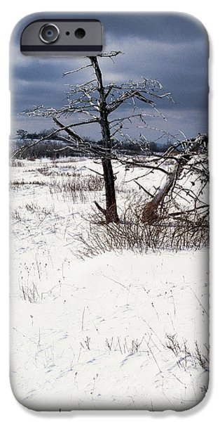 Winter Shenandoah National Park iPhone Case by Thomas R Fletcher