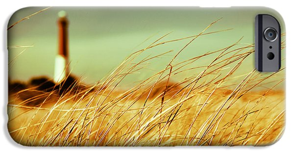 Dipasquale iPhone Cases - Winter Shore Breeze iPhone Case by Dana DiPasquale