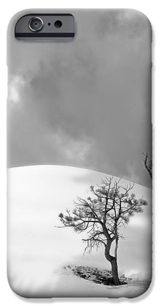 Winter Solitude iPhone Case by Viktor Savchenko