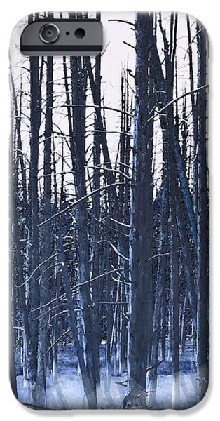 Winter Trees iPhone Case by Artist and Photographer Laura Wrede