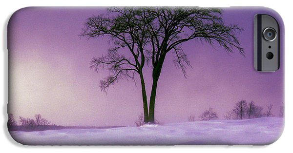 Franklin iPhone Cases - Winter Whisper iPhone Case by Natalie LaRocque